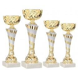 Pokal Dublin