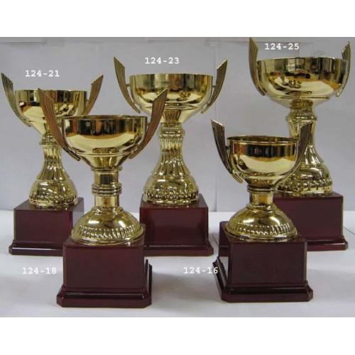 Pokal Haag